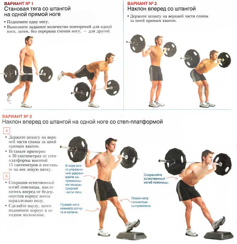 Упражнения для спины со штангой и гантелями