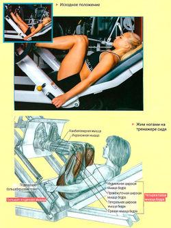 Тренажеры жим ногами