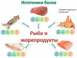 Доклад пищевая ценность рыбы 3480